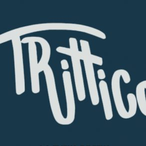 TRITTICO first release together with Timo Maas